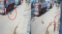 Gonggongan Anjing Selamatkan Pria India Meski Sempat Diterkam Macan Tutul